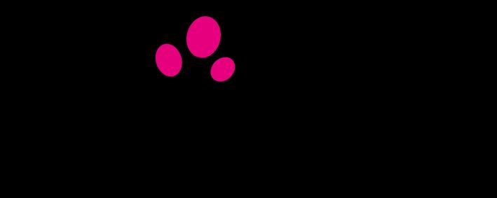 Biba-Entertainment-logo-3